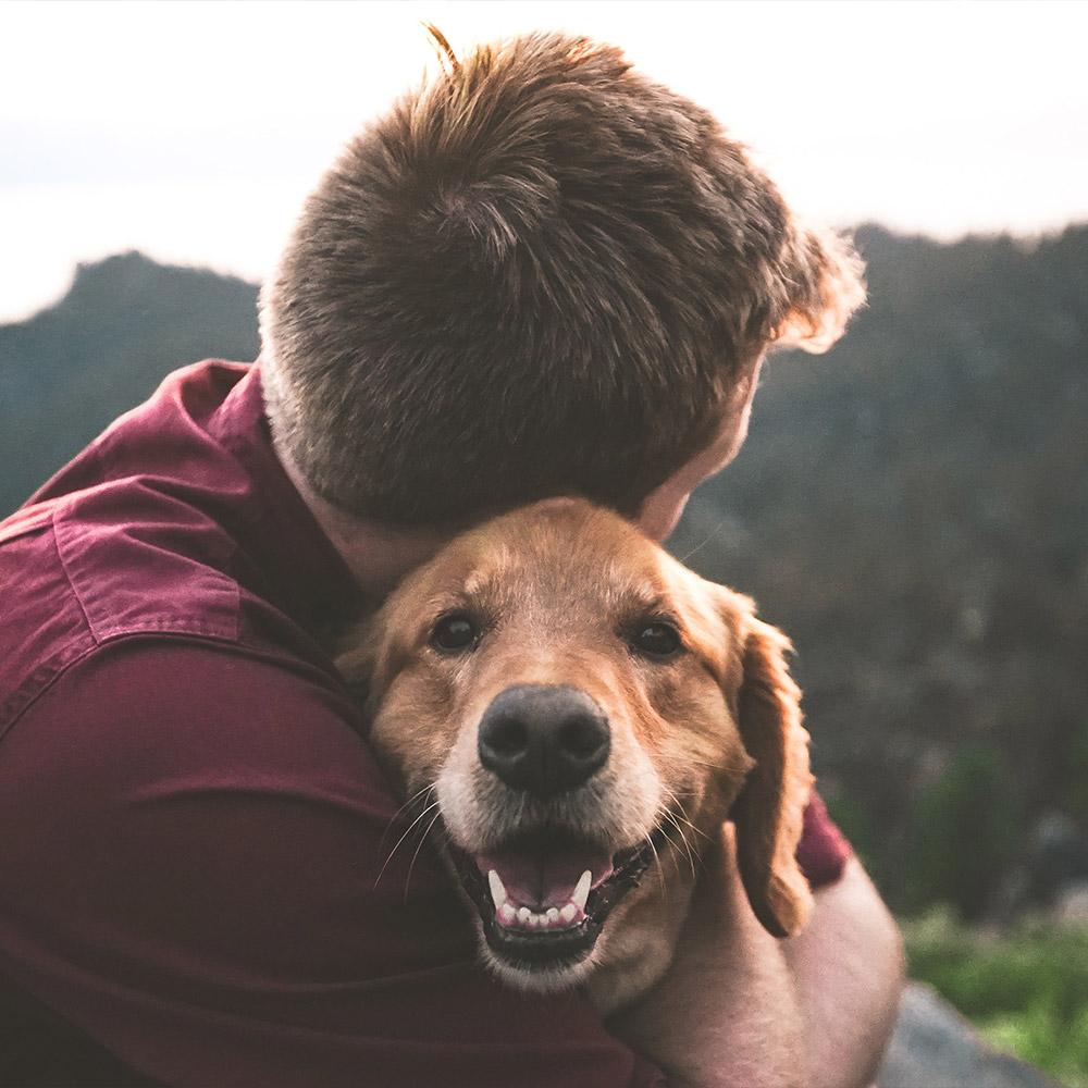 Psi savoir vivre w Ośrodku Ziemowit